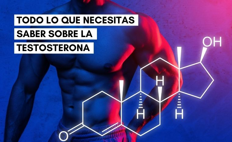 Testosterona en hombres: Beneficios y como aumentarla